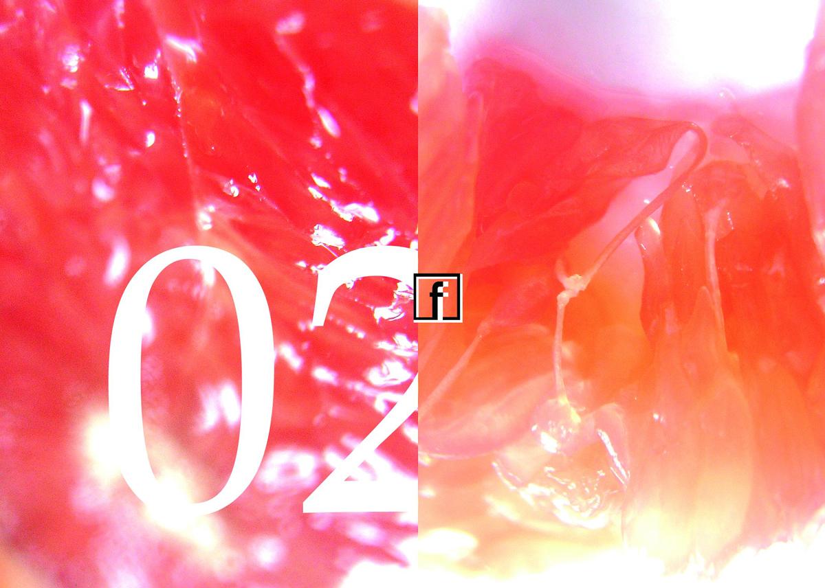 Flokati-2006-02
