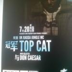 Topcat-in-Beijing-China-Artwork-